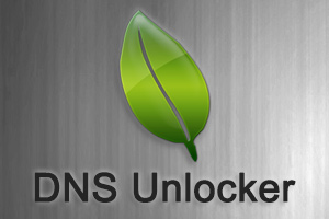 Remove DNS Unlocker ads from Mac OS X